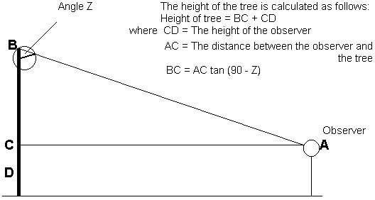 how to find the height of binary tree